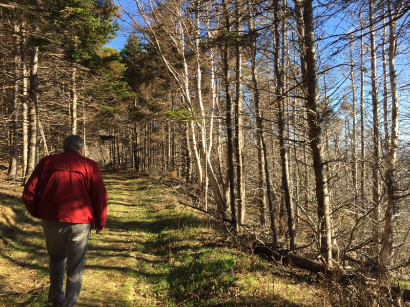 Gil MacLeod leading the way to writers' shack